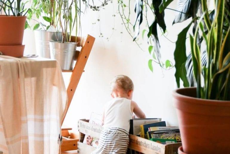 Kid-Safe Plants