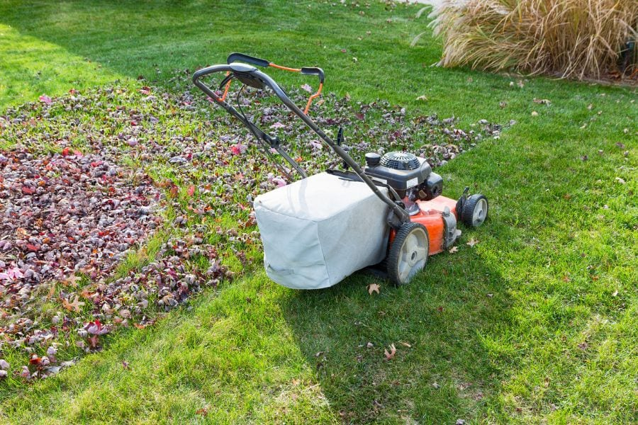 Lawn Mower Cutting Grass and Leaves