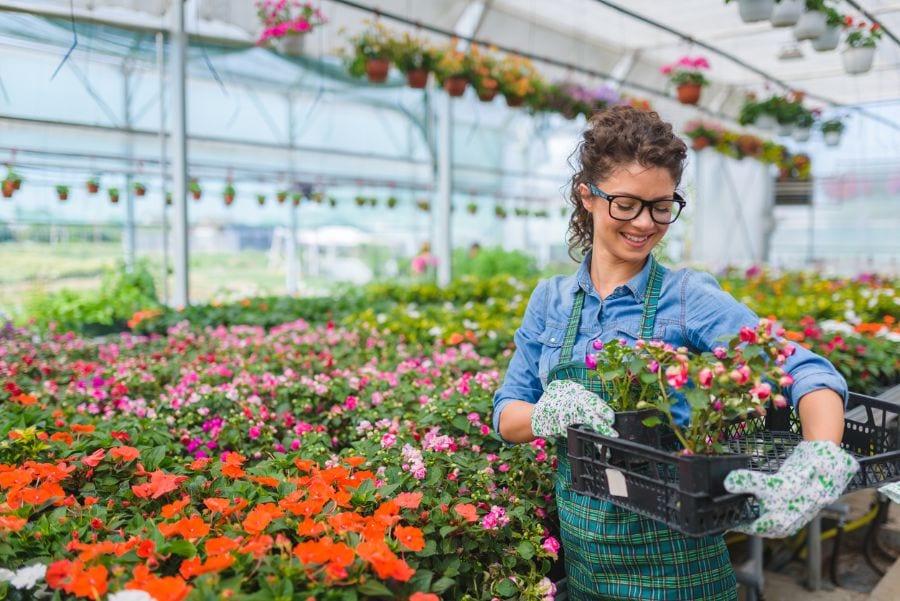 Worker in Garden Center